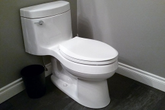 Kohler Cimarron Toilet