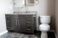 Toilet and Vanity
